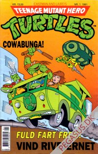 Teenage Mutant Hero Turtles 1991 1
